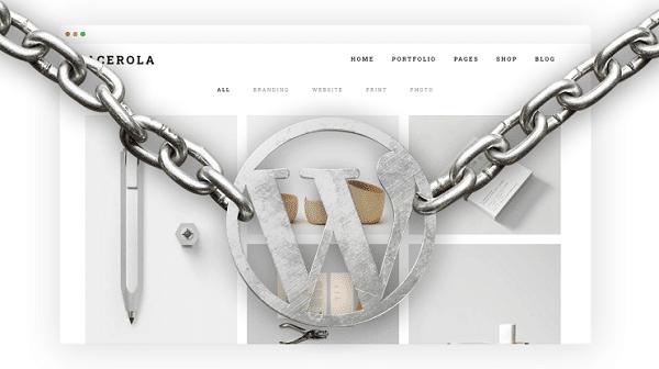 WordPress-Security-Features